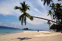 Foto de playa tortuga en Costa Rica