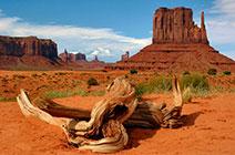 Foto panorámica del Parque Nacional Gran Cañón en el estado de Arizona